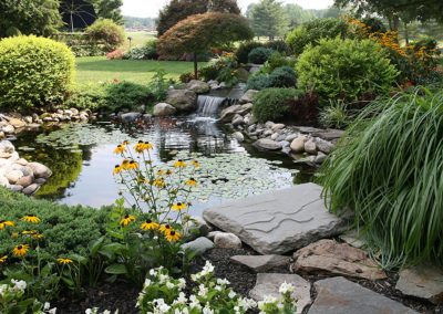 grass pond waterfall