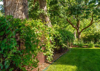 Raleigh-Street-lawn
